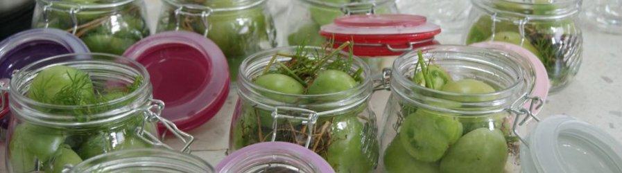 Warsztaty z przygotowywania przetworów owocowych i warzywnych – 1 edycja