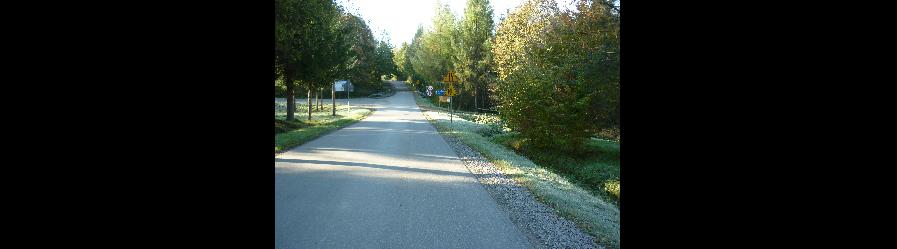 Remont drogi powiatowej nr 2113R Pastwiska – Puławy w miejscowości Puławy